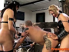 dominant-shemale-punishers