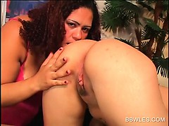 lesbo-bbw-sluts-rubbing-craving-pussy-in-bed