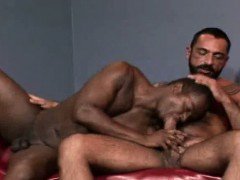 hairy-and-interracial-encounter