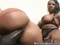 black-girls-ride-cock-with-their-big-ghetto-booties