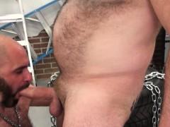 chubby-cocksucker-barebacked-by-mature-bear