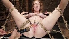 BDSM Collection