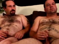 Southern Bears Tugging Their Cocks