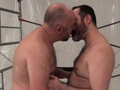 versatile-chubby-bears-breeding-in-sex-swing