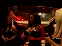 curvaceous swinger chicks get lubricated tonight