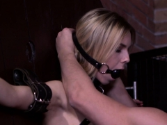 Stellar Tight Kitten Gets Her Spread Cunt And Small Butthole