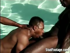 see-guys-fucking-in-the-swimming-pool