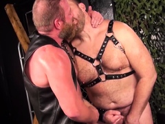 bearfilms-mature-bears-in-leather-swap-head-before-banging