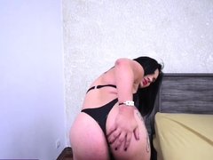 Tranny posed for a client before anal