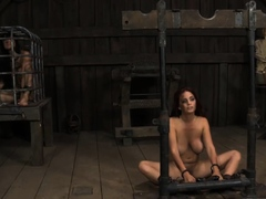 Worthless bitch is made to joy her excited pussy