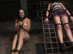 Lusty and wild bitches are stuffed inside a tiny cage